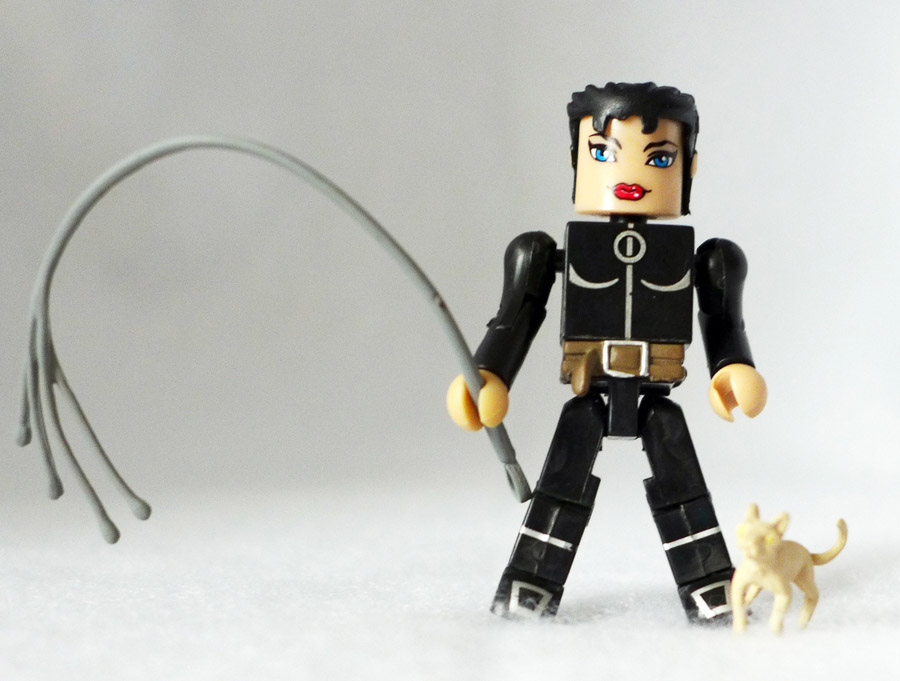 Unmasked Catwoman Custom DC Minimate